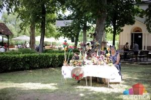 SUBOTICAcom 15Jul2017 Subotica 1187319
